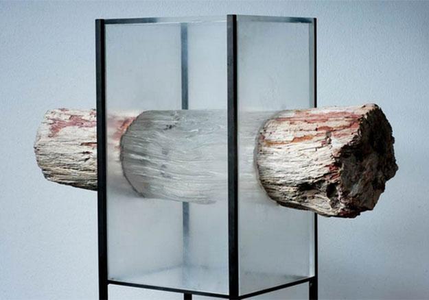 Swedish Scientists Develop Transparent Wood To Brighten